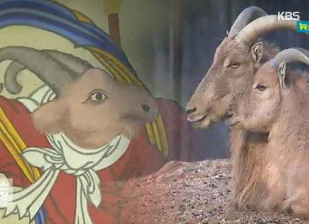 Rund um die Tiere des Östlichen Zodiak: Schaf