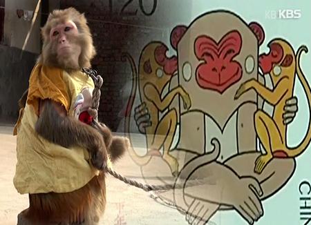 Rund um die Tiere des Östlichen Zodiak: Affe