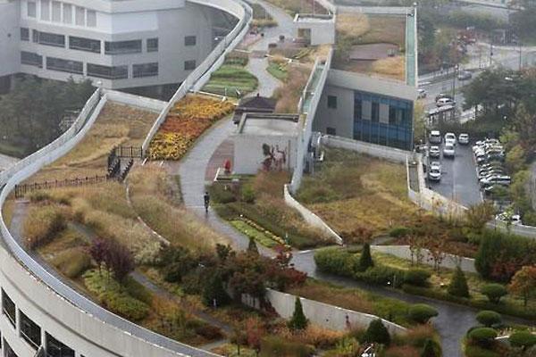 افتتاح أكبر حديقة في العالم فوق سقف مبنى في مدينة سيجونغ