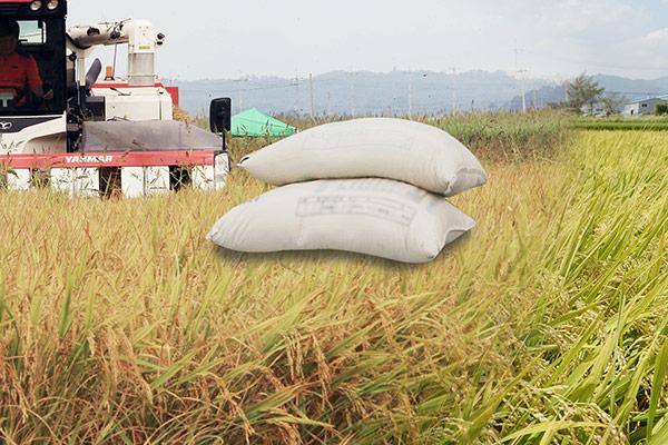 ارتفاع كبير في صادرات الأغذية الكورية المصنعة من الأرز