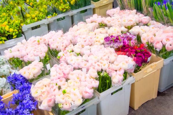 زيادة عدد محلات الزهور في محطات المترو