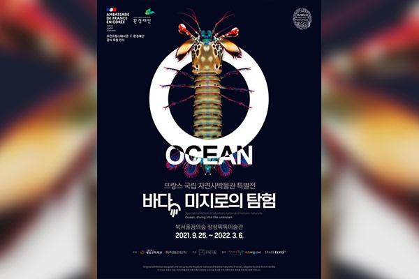 Océan, une plongée insolite