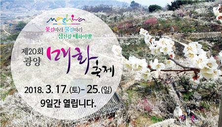 Festival de la fleur d'abricotier de Gwangyang 2018