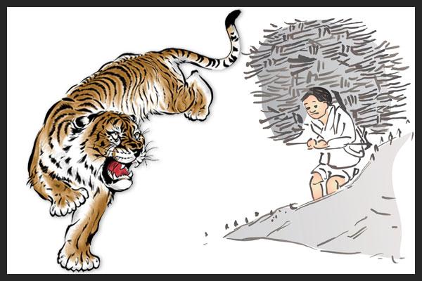 Grand frère tigre