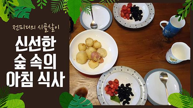 Vlog : 텃밭에서 식탁까지! 신선한 숲 속의 아침 식사!