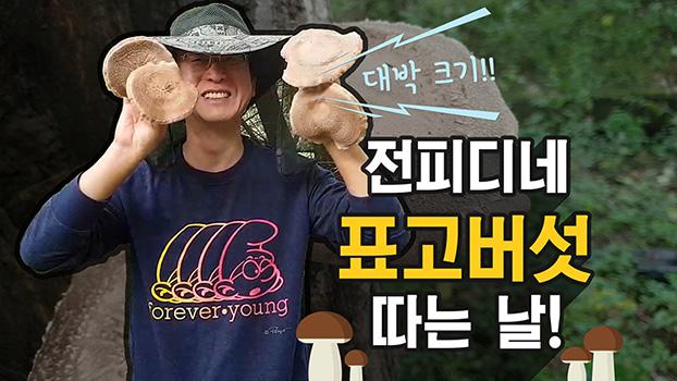 대박 크기! 전피디네 표고버섯 따는 날!