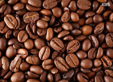 咖啡渣的妙用