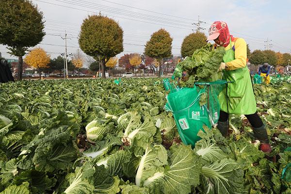 新型コロナウイルス―農業への影響