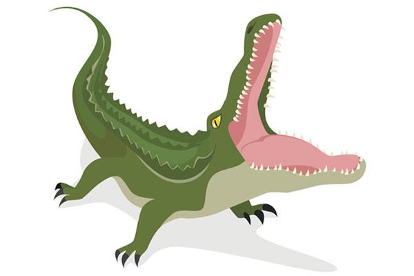 Graphique de la bouche du crocodile