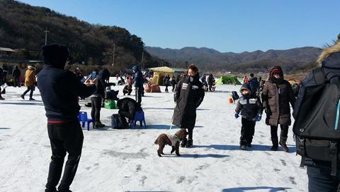 Liburan Musim Dingin Di Korea Selatan