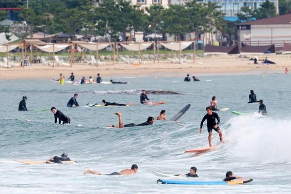 第518話 韓国の海でのサーフィンが人気