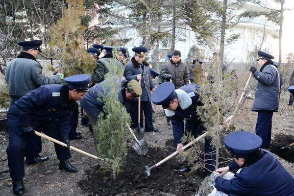 Le problème de la déforestation en Corée du Nord