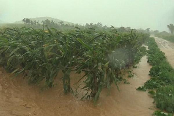 北韩暴雨成灾的环境