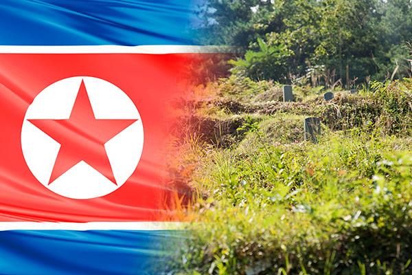 北韩的节日