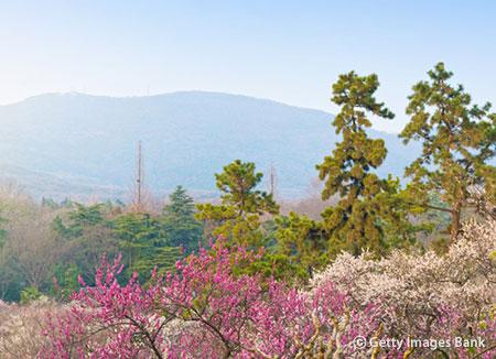 Les montagnes coréennes accueillent les promeneurs pendant la belle saison