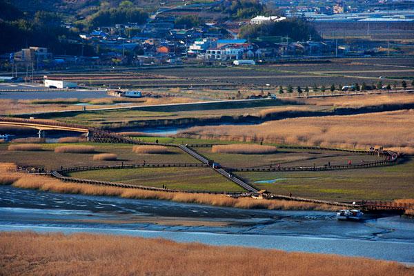 Les zones humides en Corée