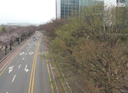 Le printemps arrive sur Seoul