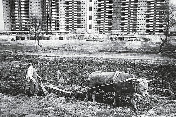 Типовые жилые высотки: обитель среднего класса. Часть 1