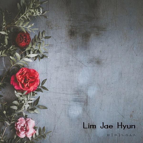 Quần áo đắt tiền (Lim Jae-hyun)