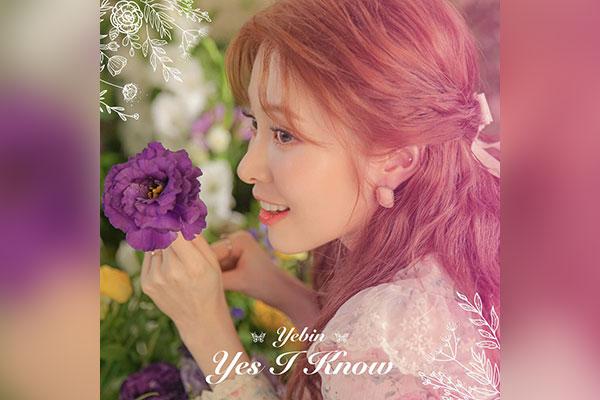 Yes I Know (Ye-bin (DIA))