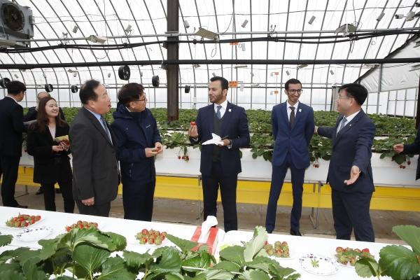 زيارة السفير الإماراتي لدى سيول إلى مقر الهيئة الكورية لتنمية القرى الزراعية
