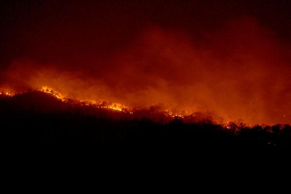 《一日三餐》拍摄前监管不善引发山火 制作团队公开致歉