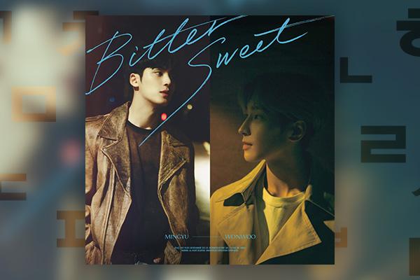 Wonwoo&Mingyu _ Bittersweet