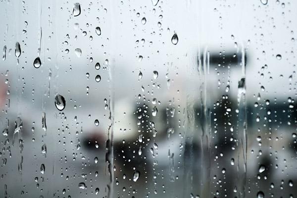 Regenzeit weckt Interesse an Liedern zum Thema Regen