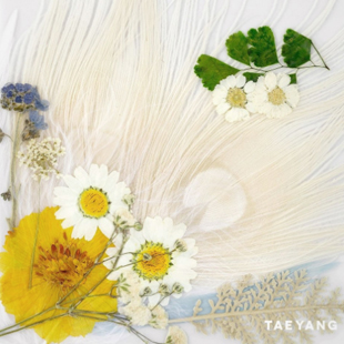 Новый сольный альбом певца Тхэяна