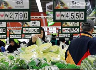 白菜価格上昇 庶民の負担倍増