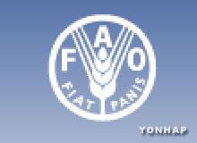 联合国粮农组织大会举行 韩国连续12年当选理事会成员国
