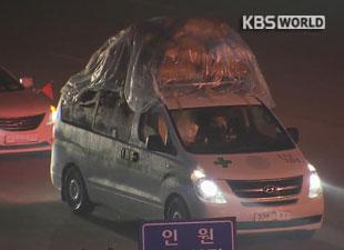 عودة 43 كوريا جنوبيا مع بقاء 7 آخرين في مجمع كيه سونغ