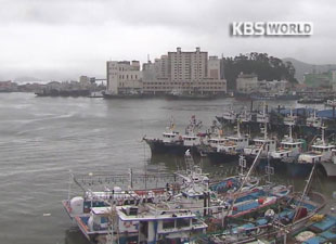 Busan Port Closed for Typhoon Danas