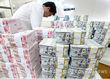S. Korea FX Reserves Reach New Record in May