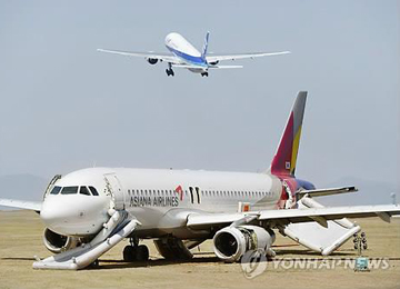 Asiana Airlines Takeoff Delayed due to Bird Strike