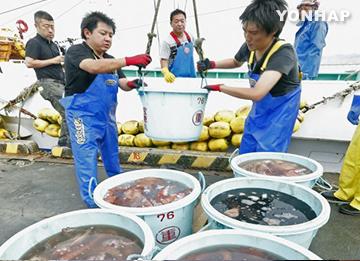 Seoul bedauert Japans Beschwerde über Importverbot für Fischereiprodukte bei WHO
