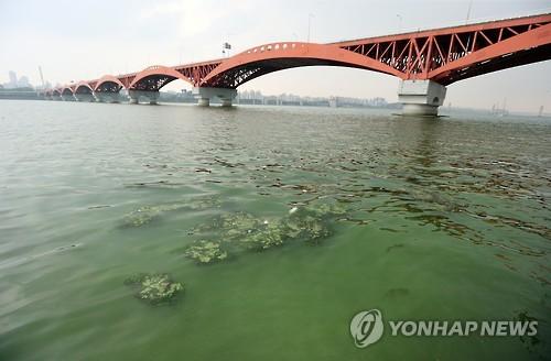 Seoul Issues First Algae Bloom Alert on Han River
