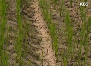 [북한] 北, 가뭄에 '수인성질병 의약품'도 요청..한·중 제의는 외면