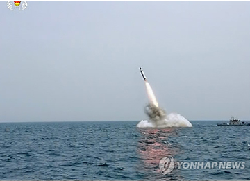 """[국제] """"북한, 최대 핵무기 22개분량 핵물질 보유 가능성"""""""