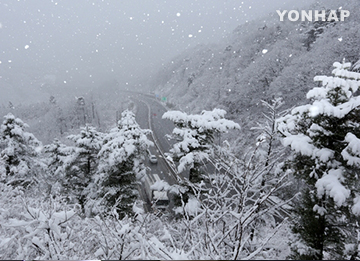 First Snow Spotted in Parts of Seoul, Gyeonggi Province