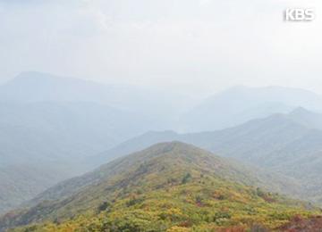 国立公園の救命活動にドローン 12月から