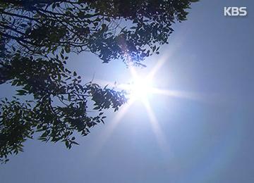 '뜨거운 지구촌' 8월도 가장 더웠다···16개월 연속 기록 경신