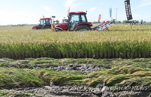 Gov't to Ease Development Ban on Agricultural Land to Boost Rice Price