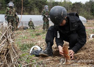 В провинции Кёнгидо началось разминирование районов, прилегающих к ДМЗ