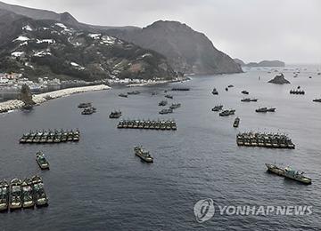 중국어선, 동해에서 오징어 '싹쓸이'···해마다 어획량 줄어