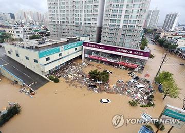 Typhon Chaba : l'île de Jeju et plusieurs villes du sud-est déclarées zones sinistrées spéciales