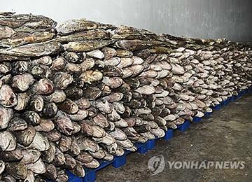 El envío de productos pesqueros norcoreanos a China y Rusia aumenta notablemente