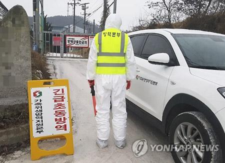 香港、ベトナム 韓国産家きん類の輸入停止措置