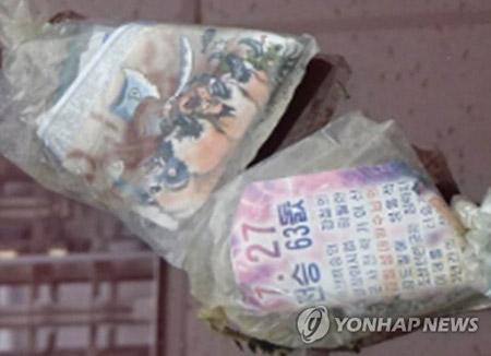 Nordkoreas Medien wollen Einfluss auf Präsidentenwahl in Südkorea nehmen
