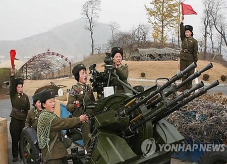 Пхеньян усиливает меры борьбы с беспилотниками